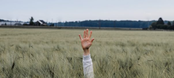 Hand up in tall grass